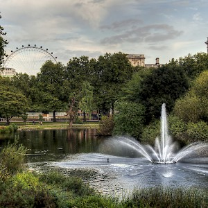 A fountain in St. James's Park with the London Eye in the background (Photo by Neil Howard)