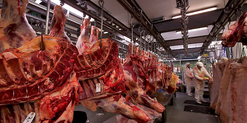 Butchers at work in Smithfield Market (Photo by Jorge Royan)